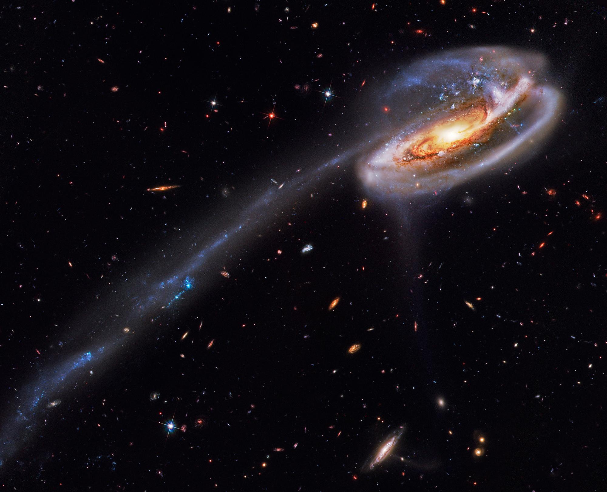 Tadpole_Galaxy