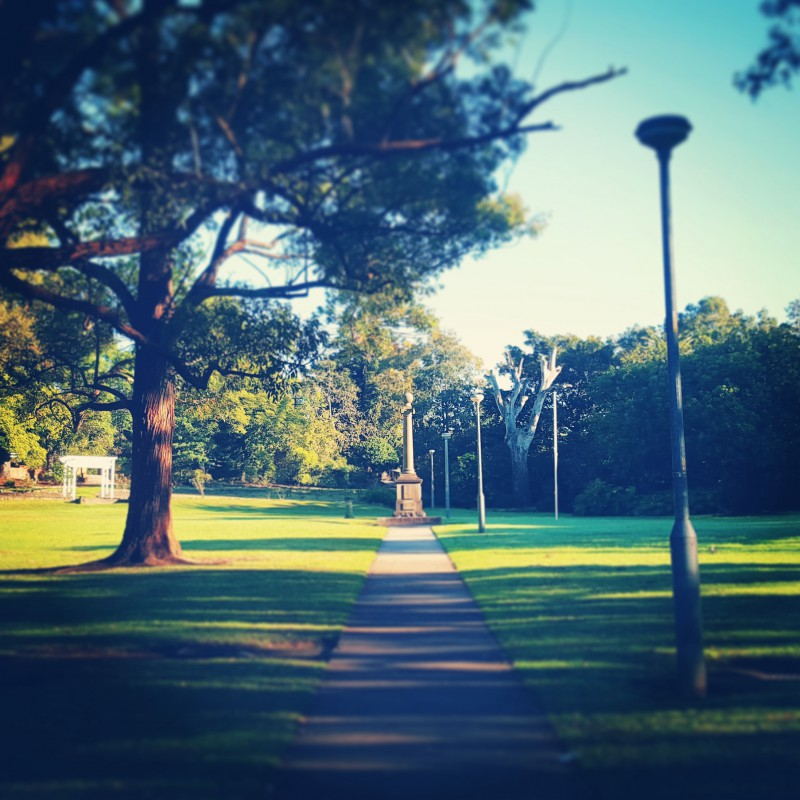 australia-forest-park-epping