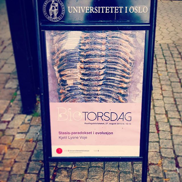 biotorsdag-plakat-1