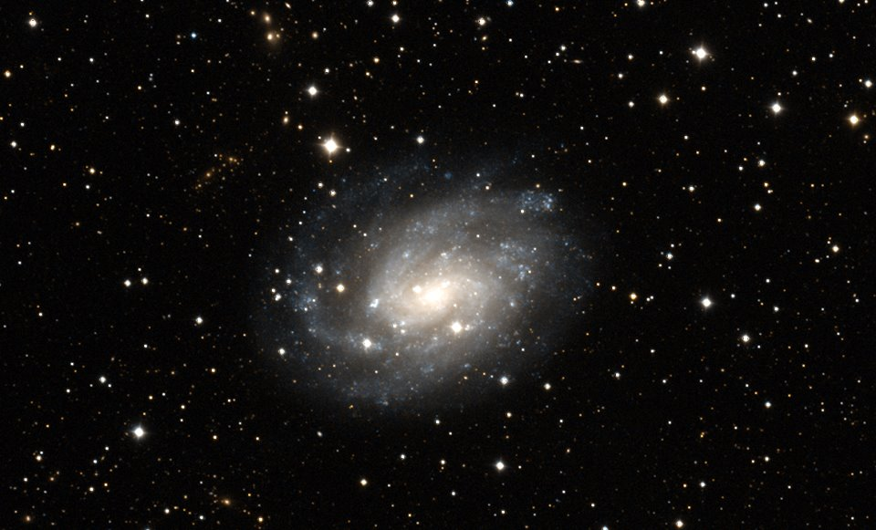 ngc300-huntsman-galaxy