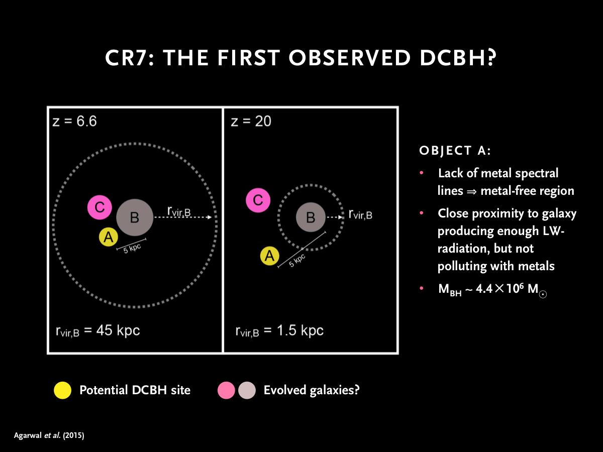 Presentasjon-DCBH-46