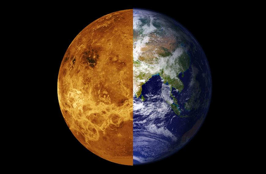 Venus: Født sånn eller blitt sånn?
